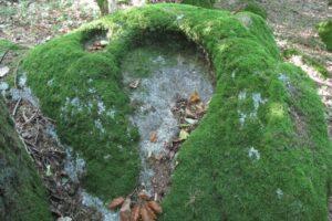 Pierres N°7 blocs et pierres à bassins sur la colline de Saulce d'Aigues C-1