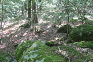 Pierres N°7 blocs et pierres à bassins sur la colline de Saulce d'Aigues D-1