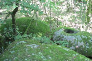 Pierres N°7 blocs et pierres à bassins sur la colline de Saulce d'Aigues E-1