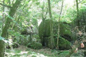Pierres N°7 blocs et pierres à bassins sur la colline de Saulce d'Aigues H-1